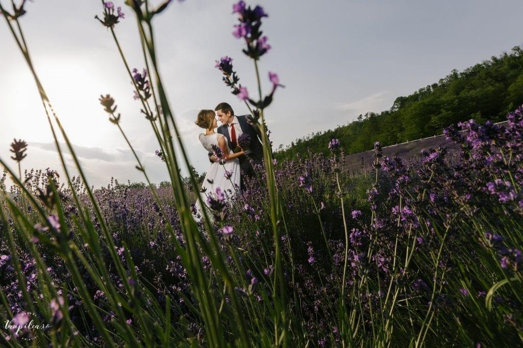 Galerie foto - Fotograf Nunta – Vasi Pilca | Fotograf Targu Mures | Fotograf Cluj | Fotograf Sibiu | Fotograf Alba | Wedding photographer